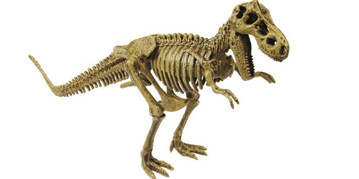 mundo-cientifico-dinosaurio-eduland