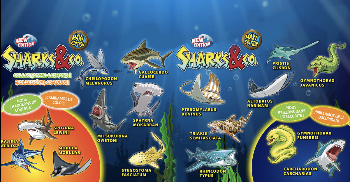 sharksco-maxi-edition-los-depredadores-mas-temibles-del-mar