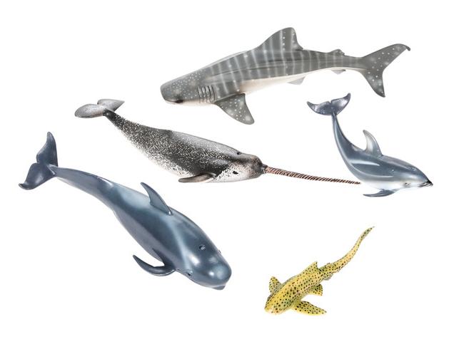 eduland-animales-del-mar